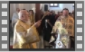 Πατριαρχική Θεία Λειτουργία για την εορτή των Αγίων Θεοφανείων.