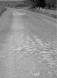 Ερείπια ρωμαϊκού δρόμου, στο Ayazma / Mesutiye (Αγιάσμαλαρ)