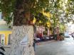 """Βρύση στο Cesme Sokak, κοντά στο καφενείο """"Κυψέλη"""""""