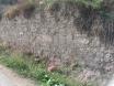 Νεκροταφείο Π Τρίγλιας 2007